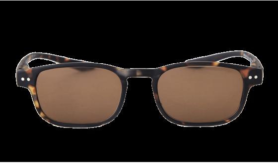 Sunglasses Manta Tortoise