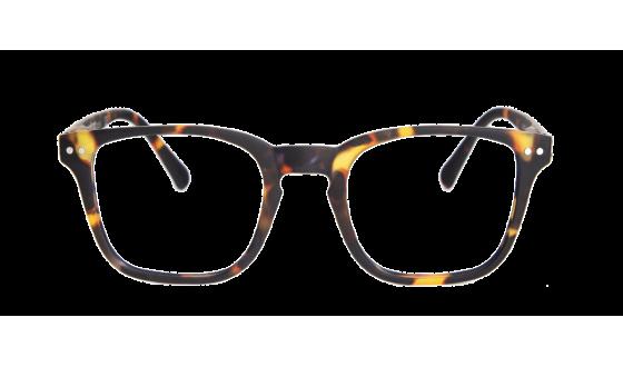 Reading glasses Creek - Tortoise