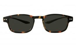 Sunglasses Clan - Tortoise